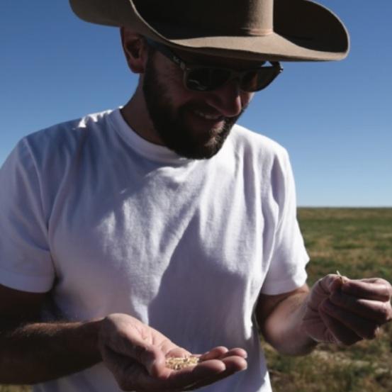 Lewis Family Farm - 354 acre organic alfafa, hay, lentil, and grain farm in Colorado