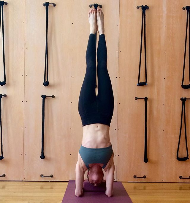 Heat up and stabilize your upper body! I am teaching arm balances TOMORROW Sunday. Come explore handstand, forearmstand, and firefly pose. Work with the shoulders to feed your higher chakras in the heart, neck, third eye, and crown. . Sunday 4/14, 4-5:30p . Details on the workshops page of my website; link in bio . @100smith_wellness . Photo @yogaunionnyc . . . #forearmstand #arm balances #chakras #chakrayoga #tittibhasana #fireflypose #pincamayurasana #adhomukhavrksasana #handstand #yogaforstrength #coreyoga
