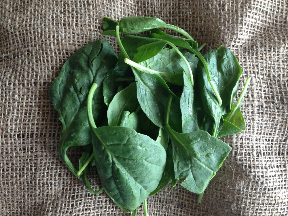 spinachWEB.jpg