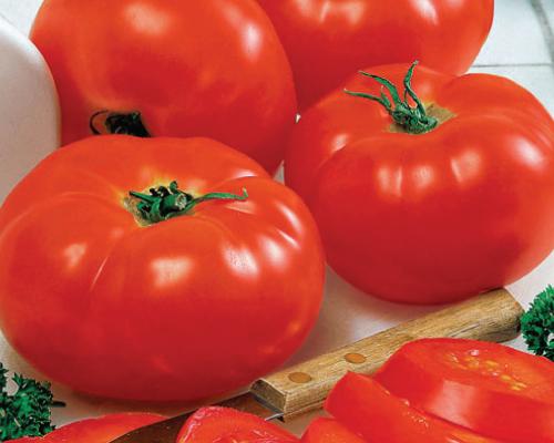 BIG BEEF*   Big Red Tomato