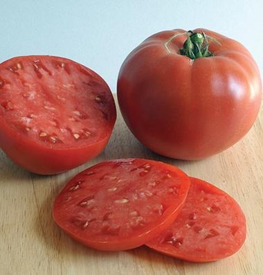 ROSE    Large Pink Tomato