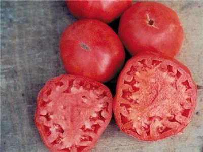 PINK BRANDYWINE*     Large Pink Tomato
