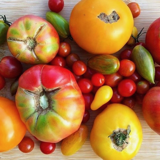 VARIETY - Try new types of vegetables you never knew you loved & sample heirloom varieties of veggies you already know and love