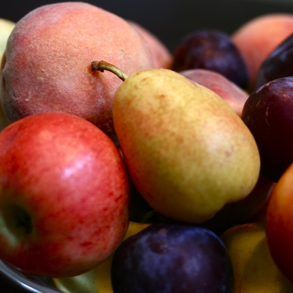 FRUIT  SHARE - $150 | 18 weeks3lb bag tree fruit or 1 pint berries per week depending on monthFrom Briermere Farms