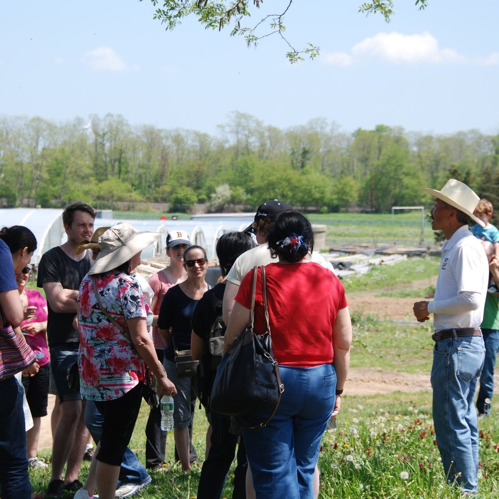 OPEN HOUSE & EVENTS - Join us in the spring and fall for a tour of the farm, tastings from the kitchen, free herb workshops, music and other activities for families.  During the season participate in strawberry and tomato picking and more.