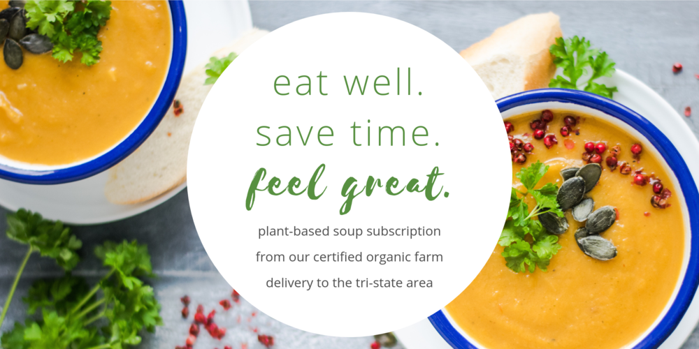 plant-based soup subscription