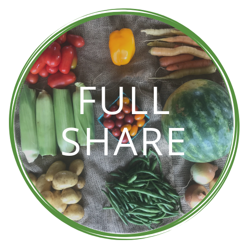 full partial share (22).png
