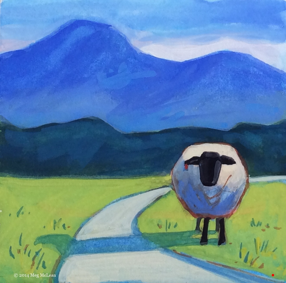 Meg McLean hitchhiking sheep