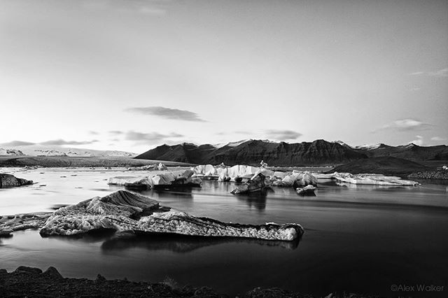 A quiet evening at Jökulsárlón glacial lagoon - Iceland • • • • • • #visiticeland #iceberg #landscapelovers #jokulsarlon #bnw_society #bw_lover #fineart_photobw #blacknwhite #bnwsouls #bnwmood #bnw_life #glacier #bw_perfect #bnw_captures #mycanon #calming #nature #explore #instadaily #photojournalist #picoftheday #lifestyle #clarity #adventure #drama #adventure #outdoors #hiking #giant #mystopover