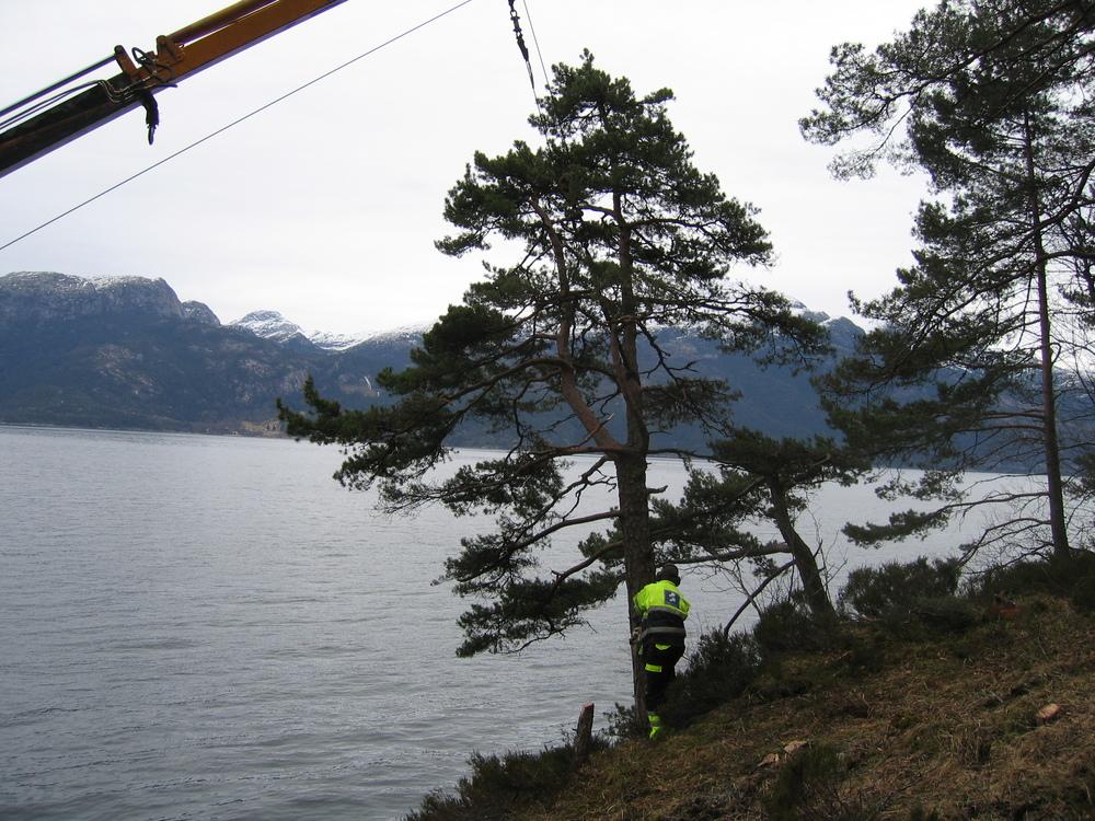 Varalsøy 017.jpg