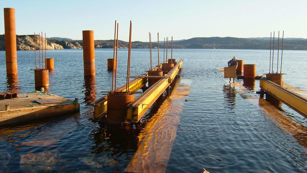 Hanøytangen 2008 446.jpg