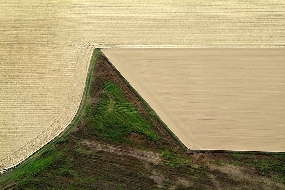 """""""In cima del campo con vento da sinistra"""" - 80 cm x 120 cm"""