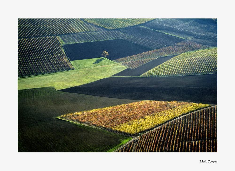 Paesaggi del Monferrato