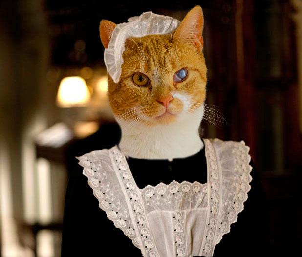maid.jpg