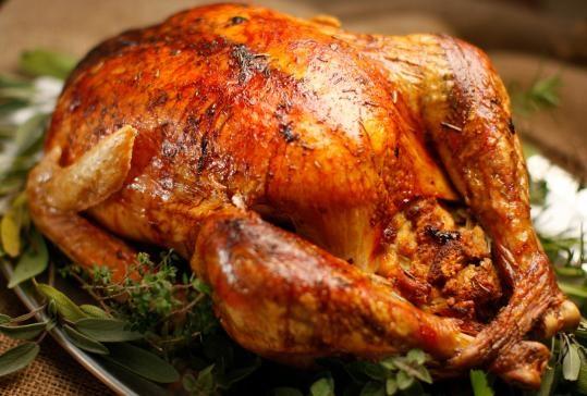 A beautifully roasted turkey