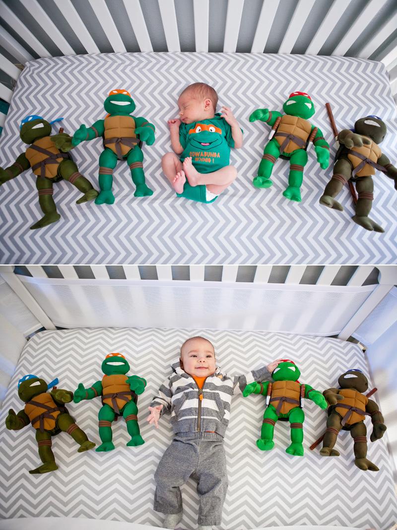 G2 Turtles.jpg