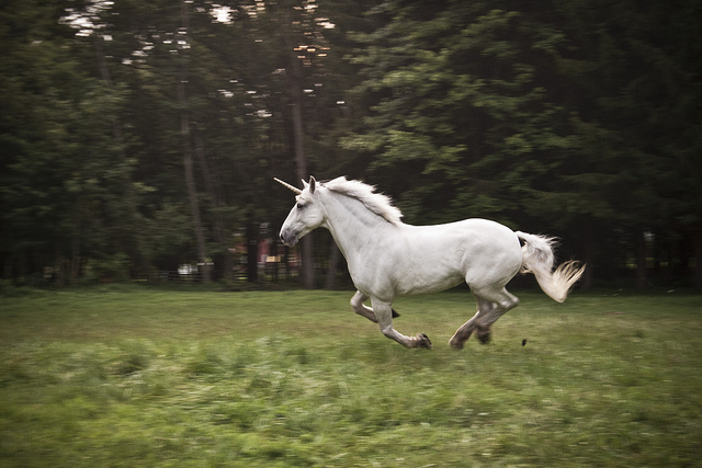 Unicorn - Full Speed | Image Credit:  Rob Boudon