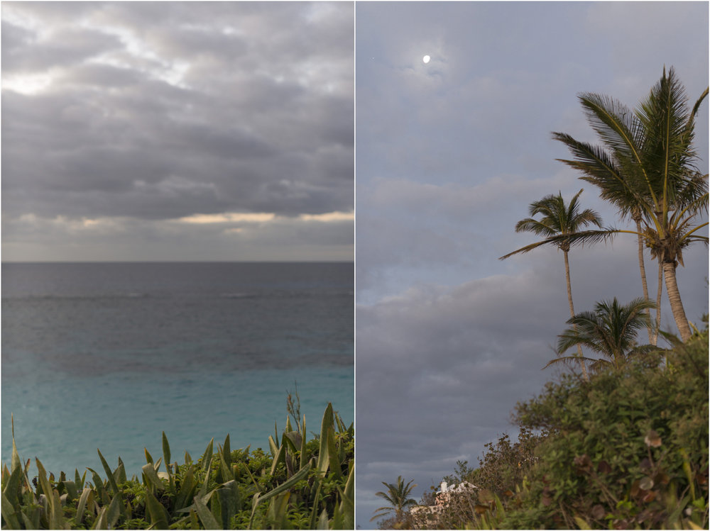 ©FianderFoto_Coral Beach_1.jpg