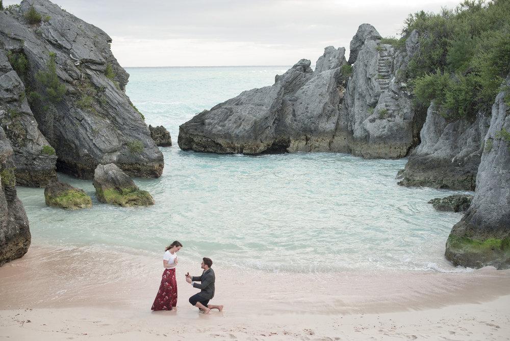 Engagements - & Proposals