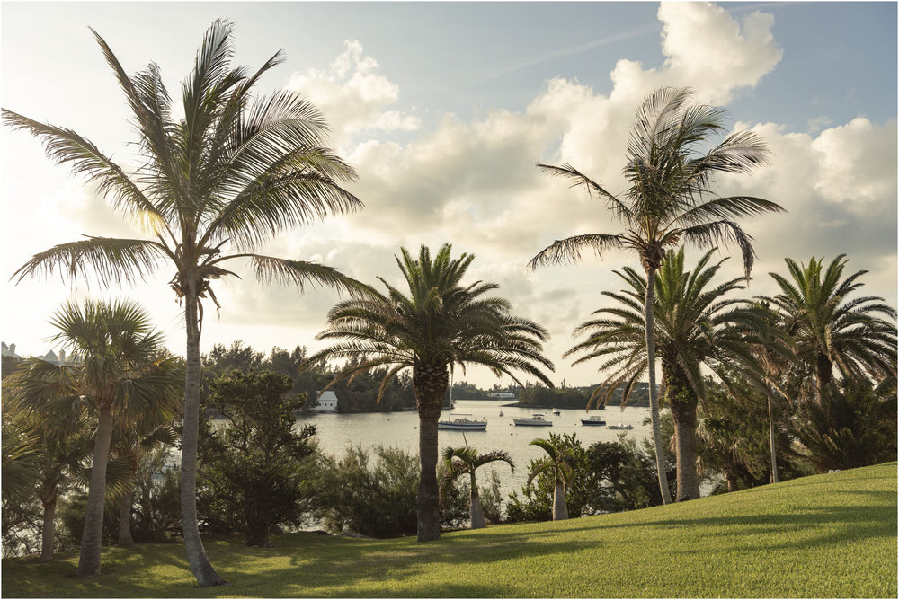 ©FianderFoto_Bermuda Photographer_Nephila_Event_008.jpg