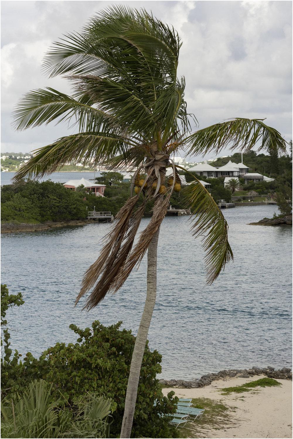 ©FianderFoto_Bermuda_Wedding_Photographer_Long_Island_Bermuda_Nancy_Ray_006.jpg