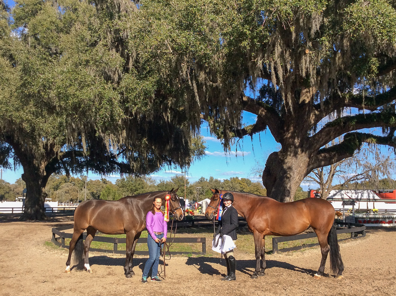 SBS Farms spends the winter attending the HITS Ocala Winter circuit in Ocala, Florida.