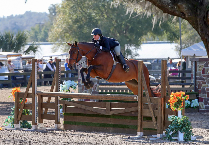 "Hey Sailor and Alex Trolli earned the 3'3"" Junior Hunter circuit championships at HITS Ocala."
