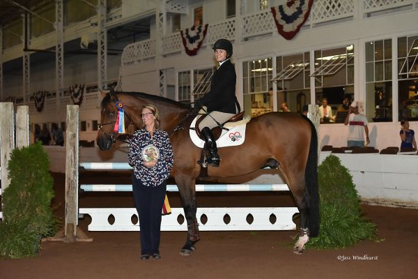 Caspian with rider Alex Mierzwa at the 2016 Buffalo International Horse Show
