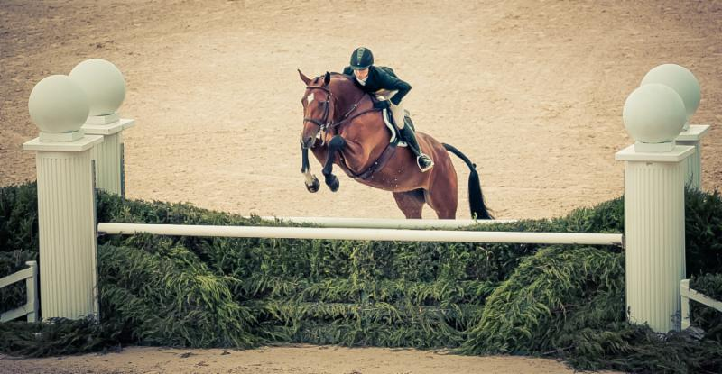 Maggie May with rider Liza Boyd at the USHJA International Hunter Derby Championship