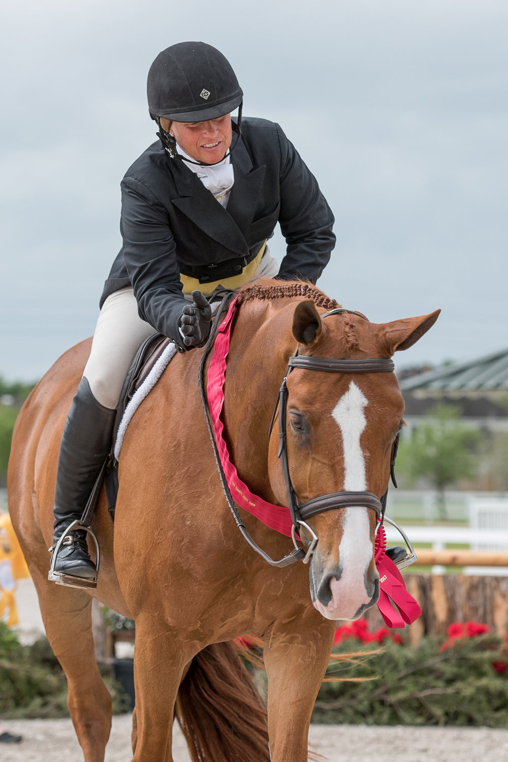 Jennifer Alfano and Jersey Boy return to the show ring at Pin Oak I for second in the USHJA National Hunter Derby.