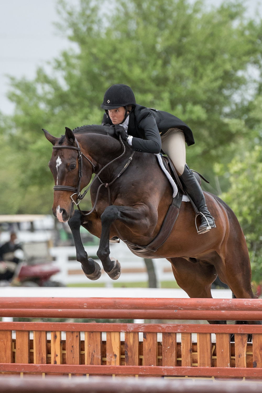 Kristy Herrera and Candid continued their success in the USHJA International Hunter Derby classes, placing second at Pin Oak I.