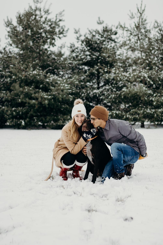 snow-7.jpg