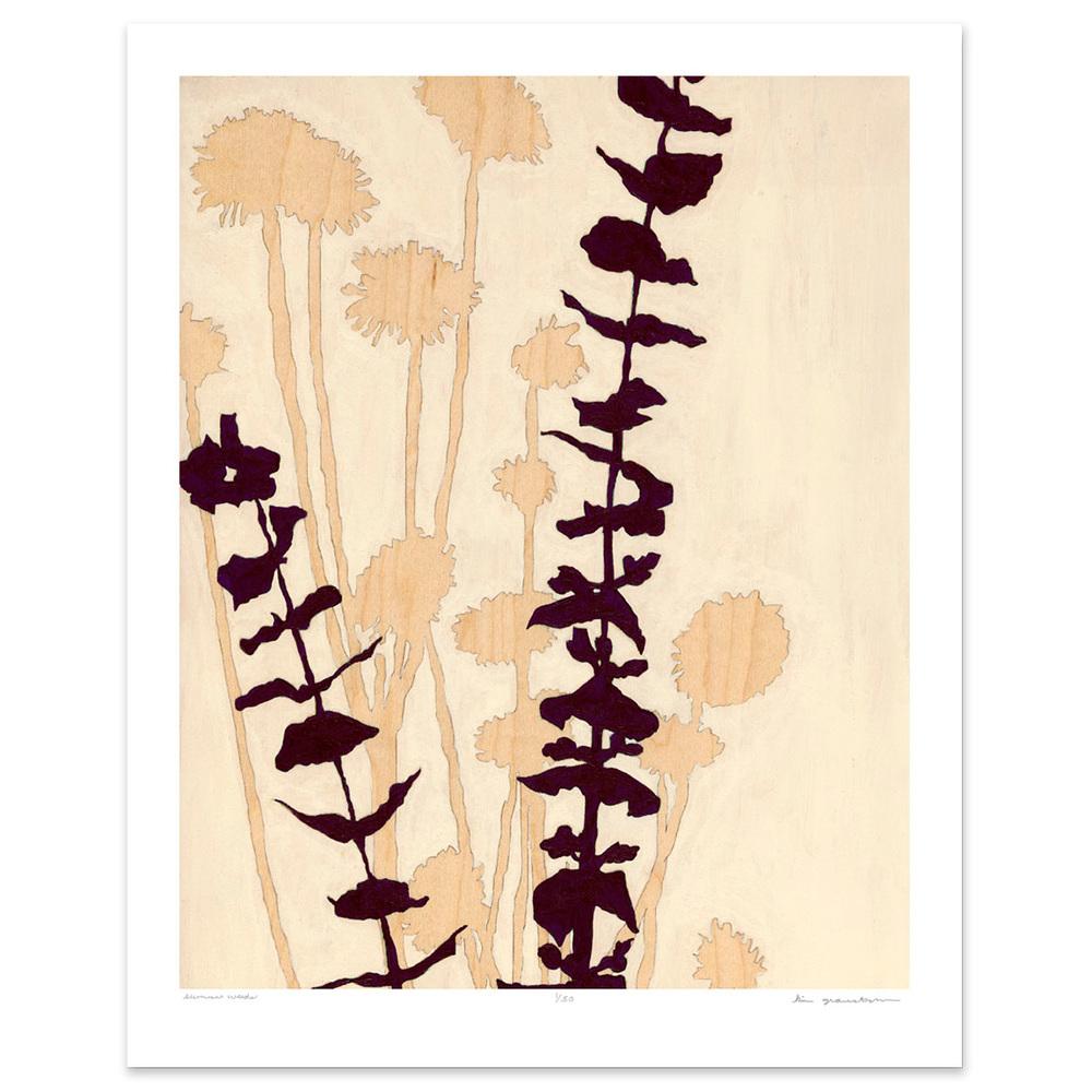Summer Weeds - 8 x 10 botanical print
