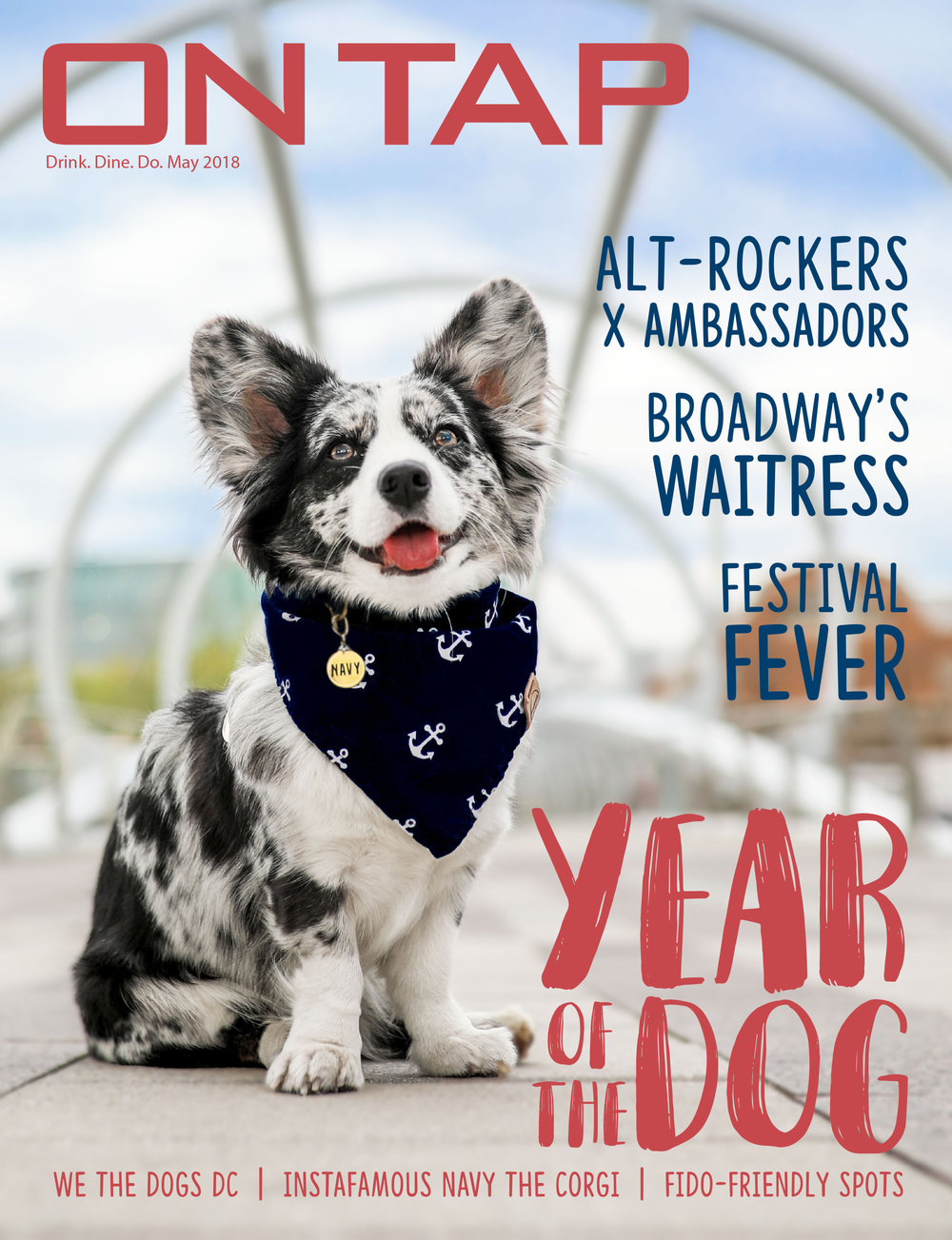LG Photography photographed Navy the Corgi for the cover of On Tap Magazine's May 2018 issue.