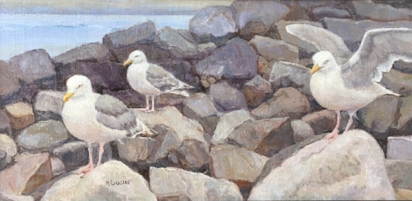 'Monhegan Gulls' 10x20 Oil