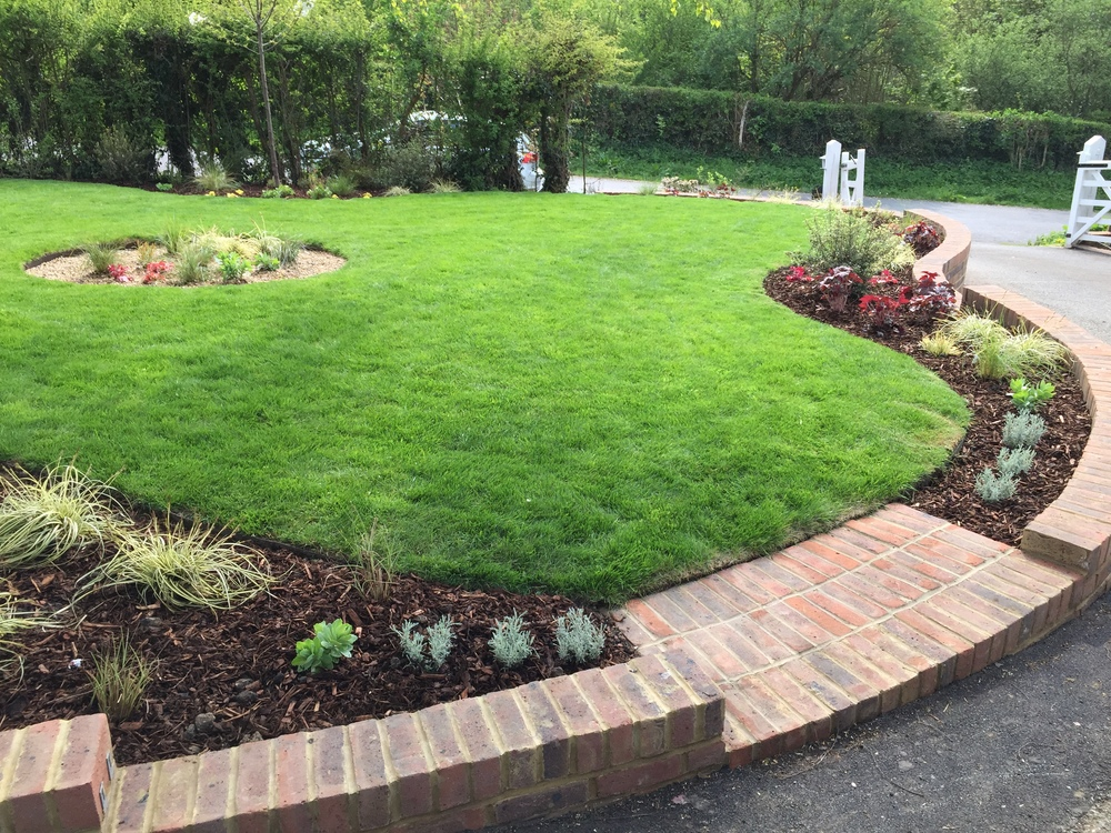 front garden design in Berkhamsted newly planted