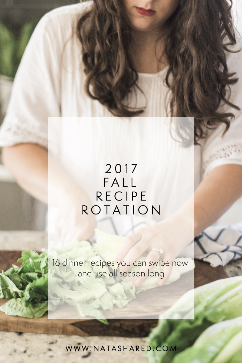 Fall Recipe Rotation....16 dinner recipes you can swipe right now to use all season long!