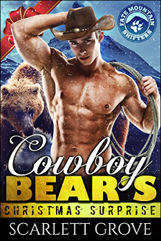 SG - Cowboy Bear's Christmas Surprise.jpg