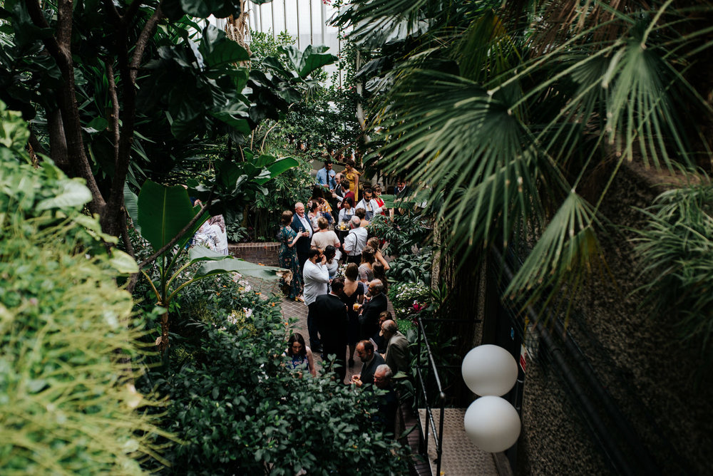 Wide photograph of guests mingling amongst the greenery at barbi