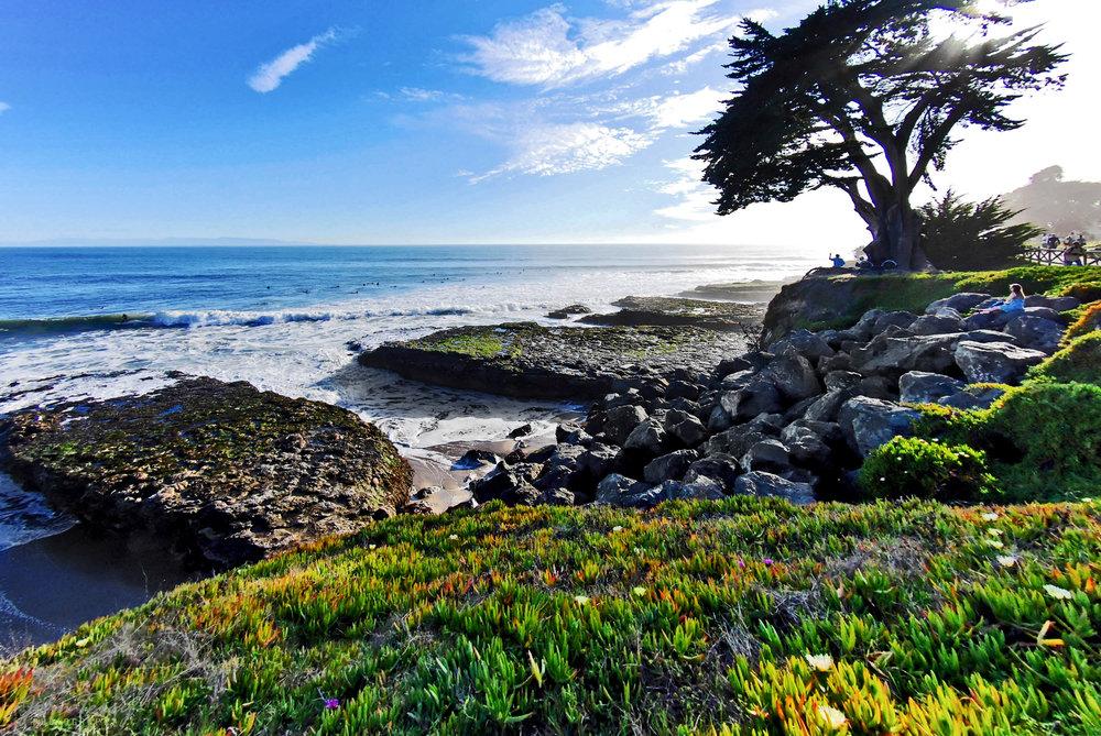 web_west-cliff-2382_3000.jpg