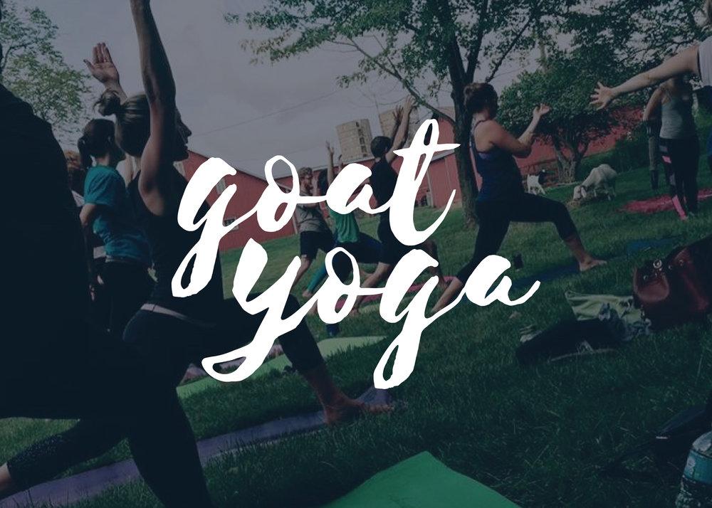 columbus-goat-yoga-class