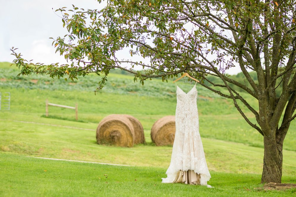 renshaw family farms wedding photos, renshaw family farms freeport pa, pittsburgh wedding photographer, pittsburgh wedding venues, bride and groom posing ideas, wedding photo ideas