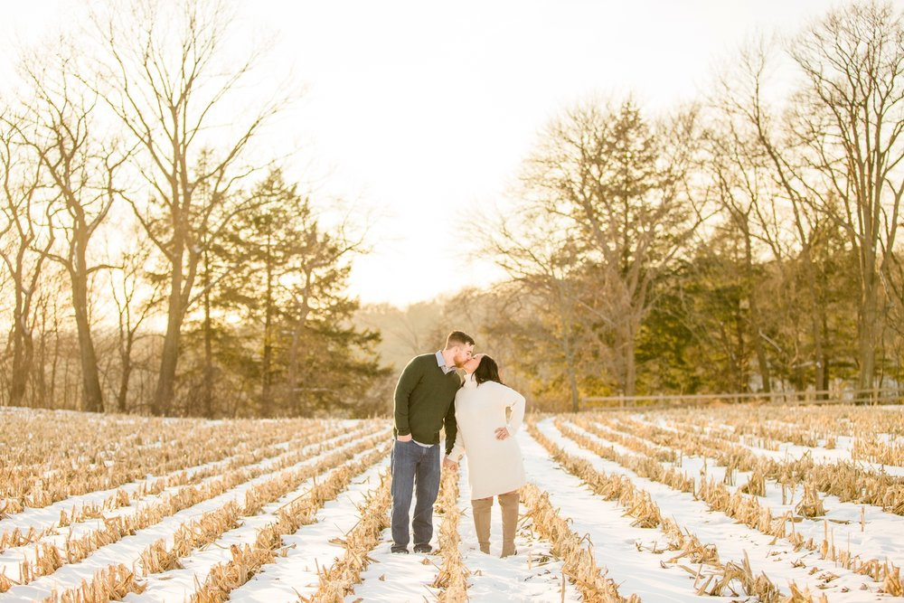 Pittsburgh-Wedding-Photographer-Hartwood-Acres-Engagement-Photos_0489.jpg
