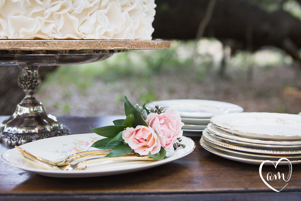 Wedding Cake Plates photographed by Florida Destination Wedding Photographer