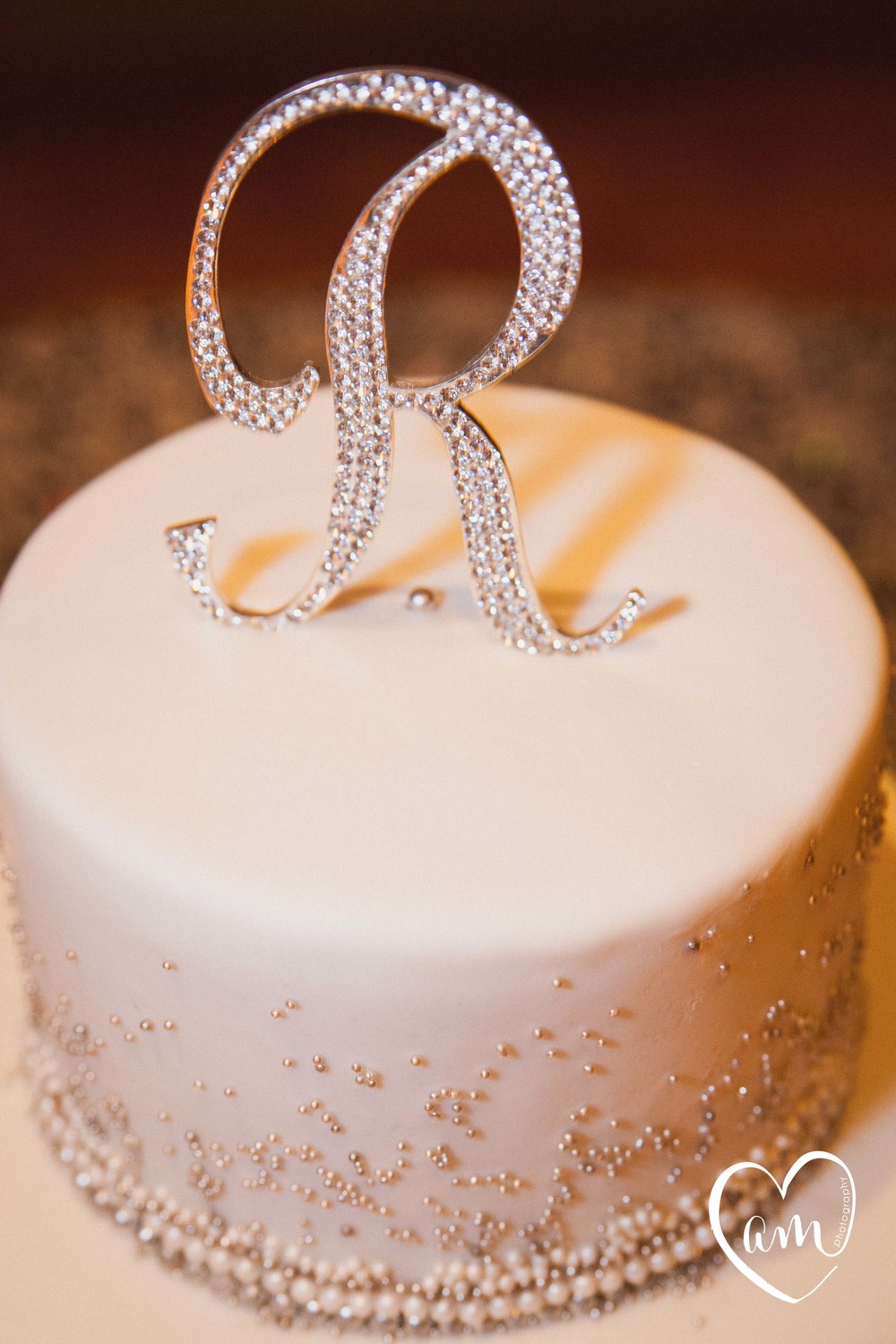 Cake Topper Photo by Amanda Mejias Photography: Destination Wedding Photographer.