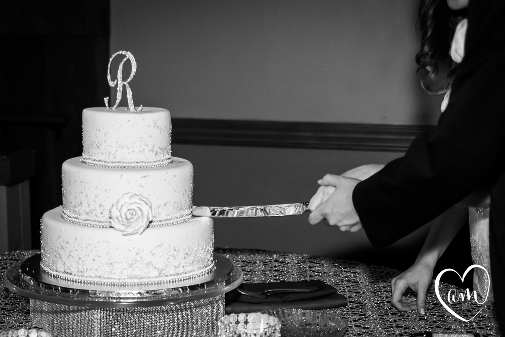 Cake Cutting Photo by Amanda Mejias Photography: Destination Wedding Photographer.