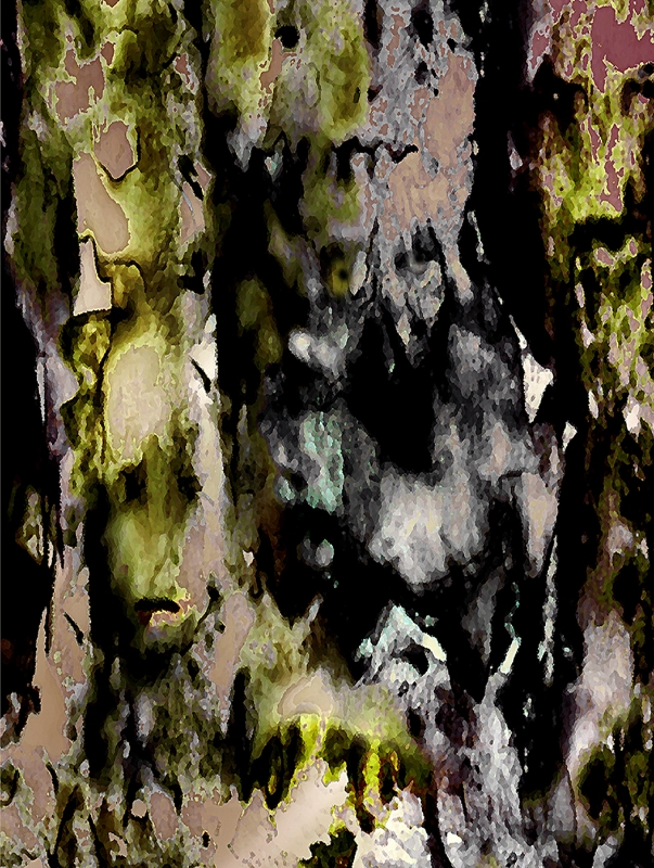 FOREST CRONES 3a, Detail 3