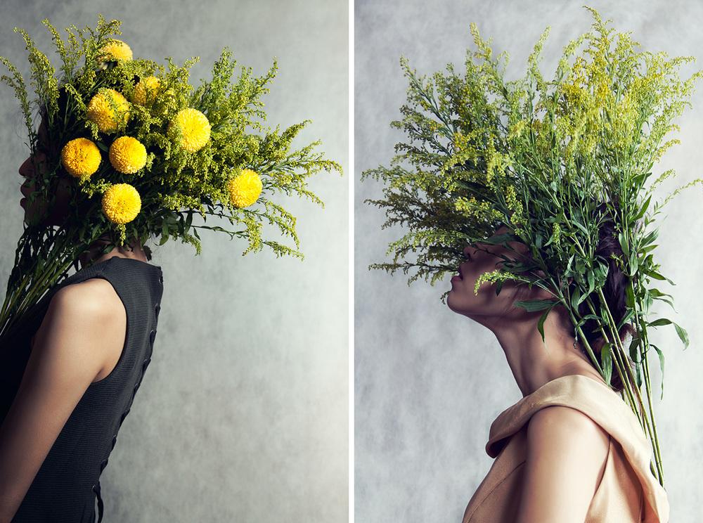 Flowerhead ©Ajax Lee