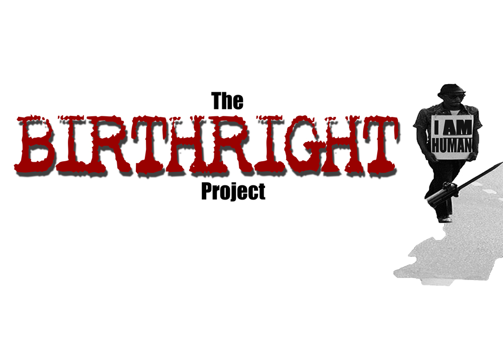 The Birthright Project Documentary Series