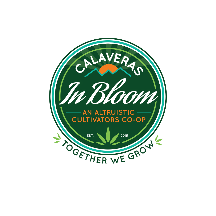 COMPANY  // Skillet Design & Marketing //  skilletcreative.com   CLIENT  // Calaveras In Bloom  Logo Development